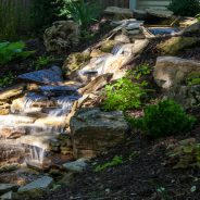 Add a Soothing Vibe to your Backyard with a Water Feature