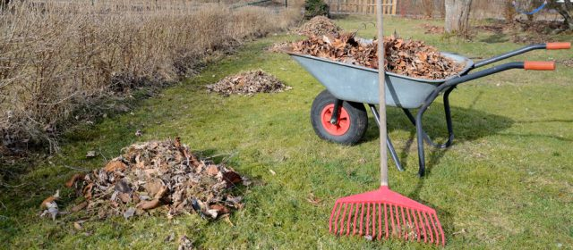 End of Season Landscape Care Tips