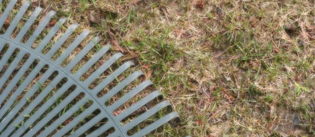 3 Spring Maintenance Tips for Optimal Growth
